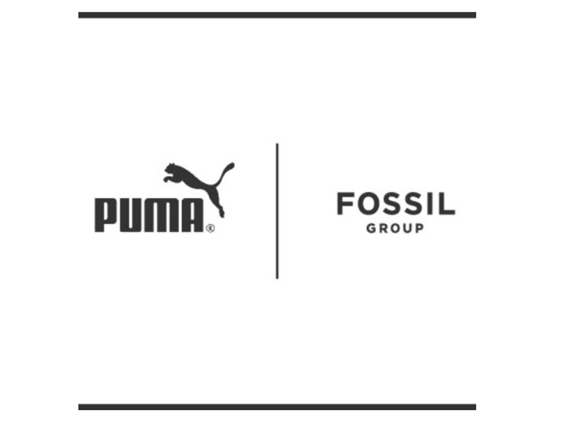 Puma_Fossil